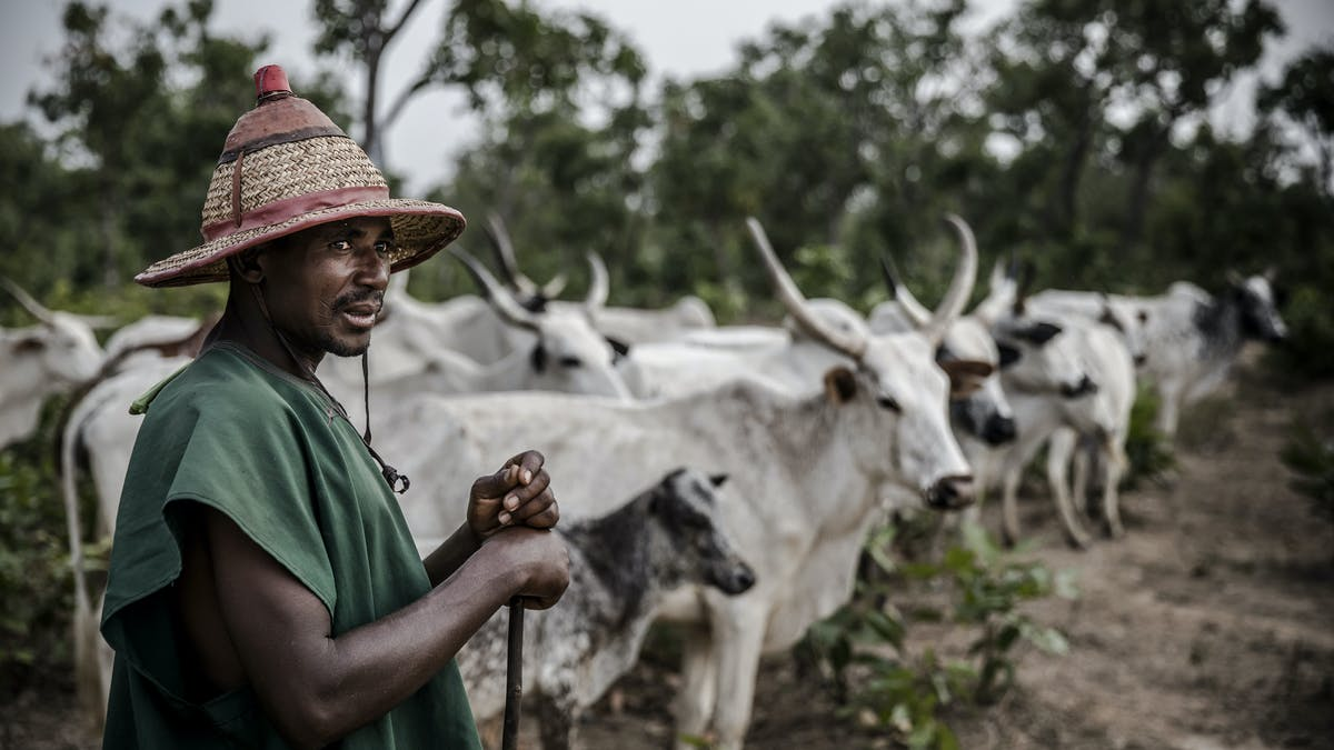 What's triggered new conflict between farmers and herders in Nigeria