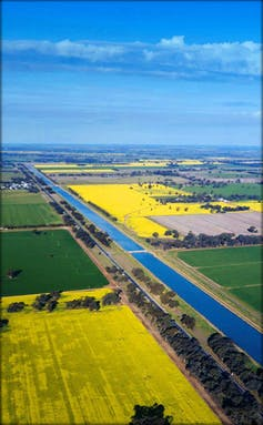 Recovering water for the environment in the Murray-Darling: farm upgrades increase water prices more than buybacks