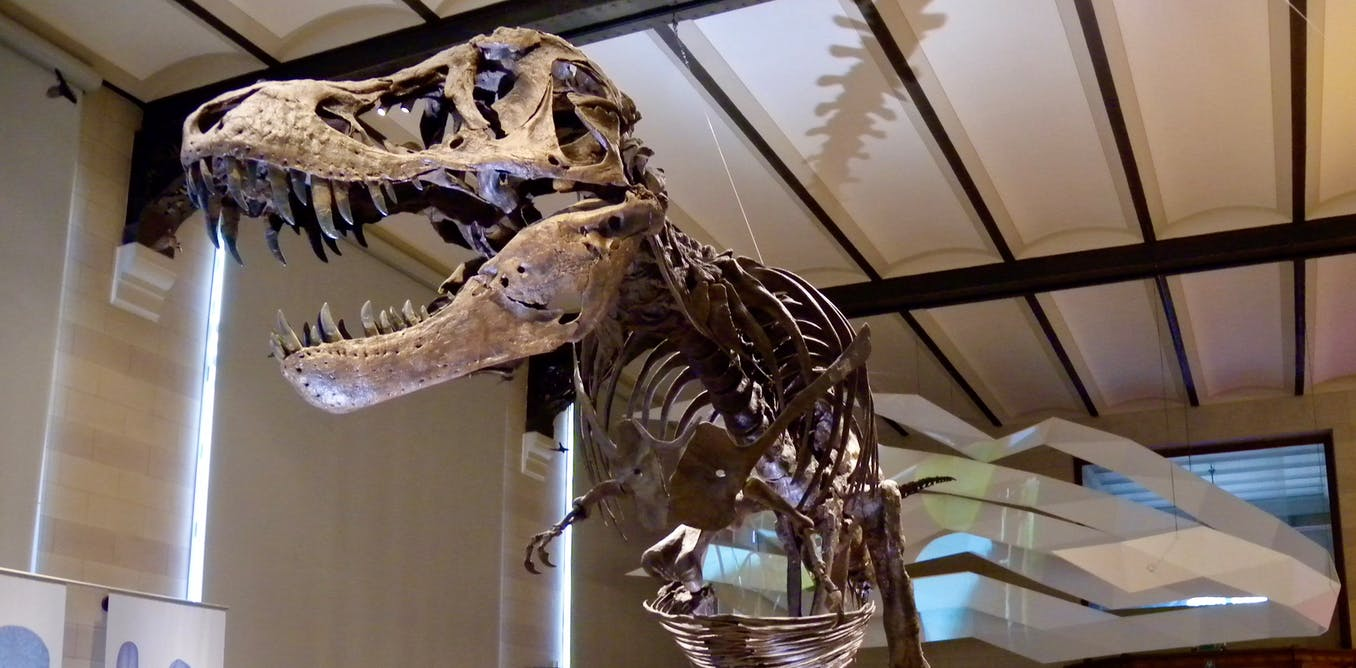 How do you weigh a dinosaur? There are two ways, and it turns out theyre both right