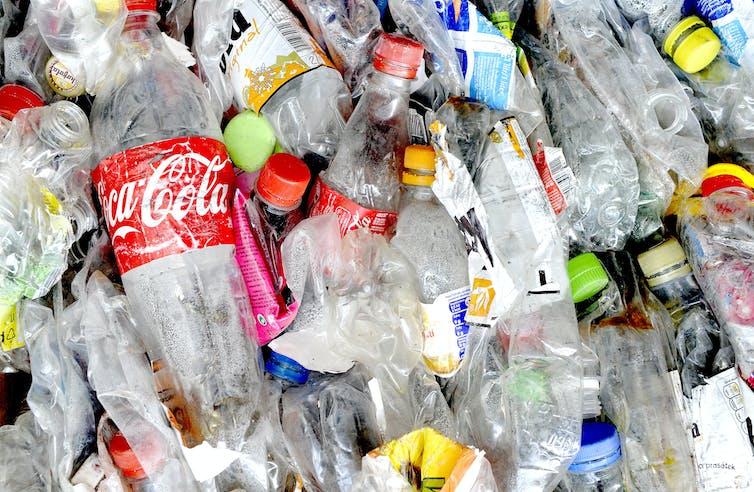 Used plastic soft drink bottles
