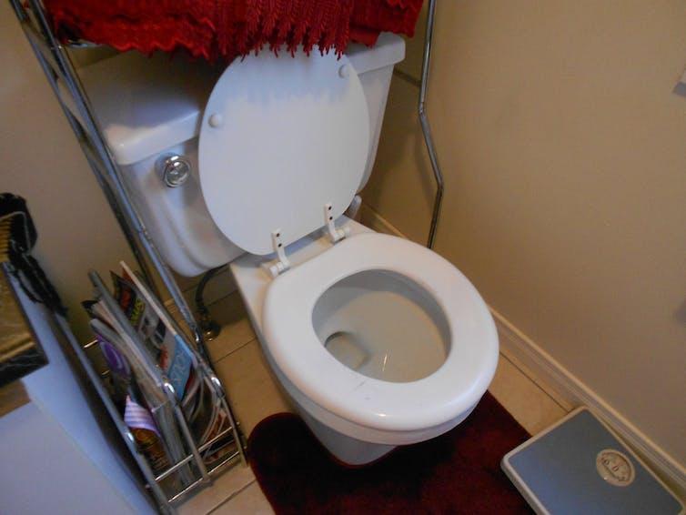 An open toilet.