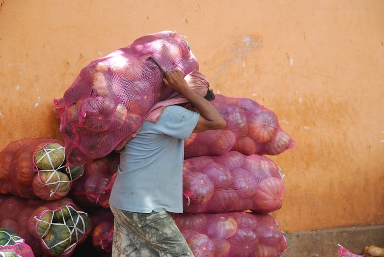 A worker lugs bags of pumpkins.