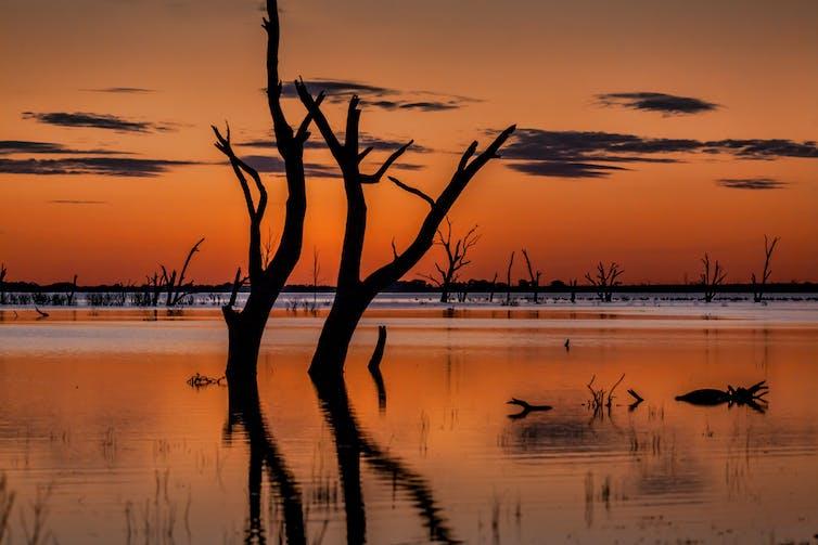 Dusk at Menindee Lakes in the Murray Darling Basin