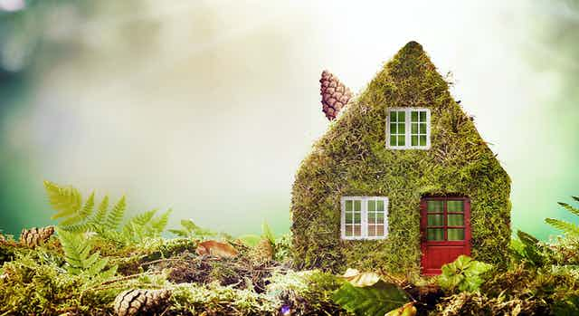 Art concept of eco-friendly house covered in moss covered model home outdoors in a garden with copy space amongst green ferns