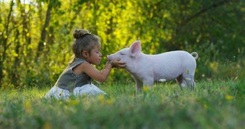 Una niña acaricia y besa a un lechón en un prado verde,