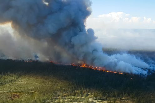 A line of wildfire burns through forest while smoke billows into the sky.