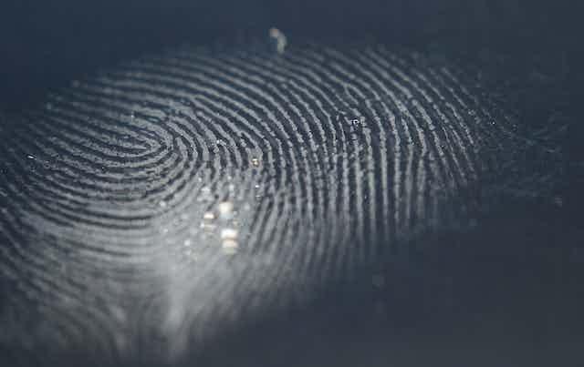 Close up of a finger print