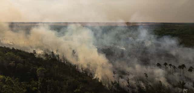 Large fire burns on a hill with dense forest.