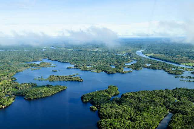 Aerial view of the Amazon river and surrounding rainforest