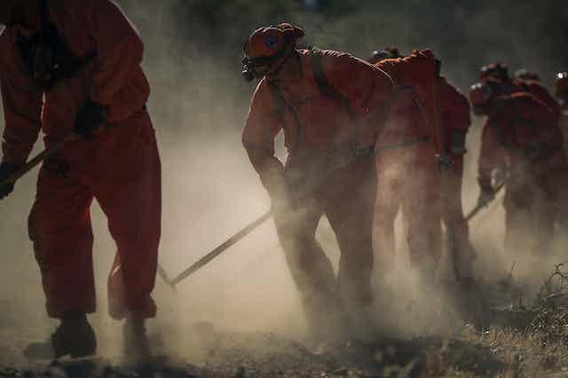 Prison laborers in orange jumpsuits clear vegetation