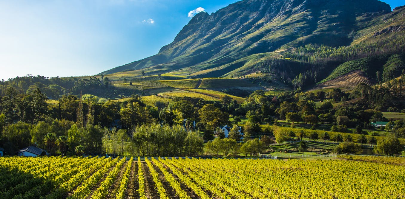 South Africa's land reform policies need to embrace social, economic and ecological sustainability