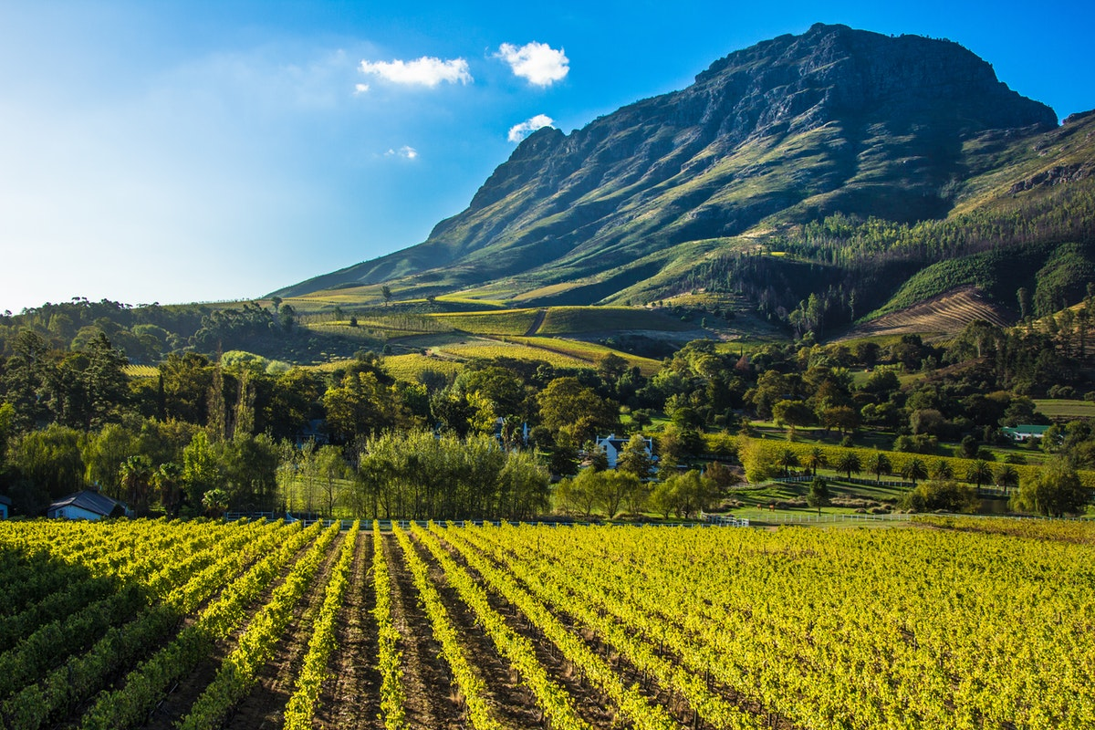 theconversation.com - Penny Mograbi - South Africa's land reform policies need to embrace social, economic and ecological sustainability