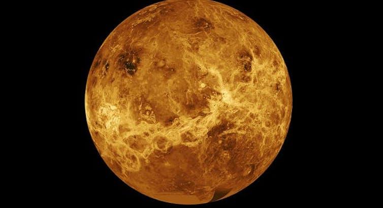 ¿Encontraron vida en Venus?
