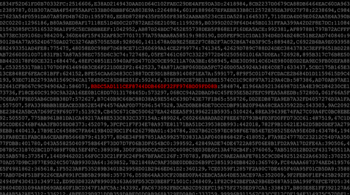 Repeated password hashes with one red hash value highlighted.