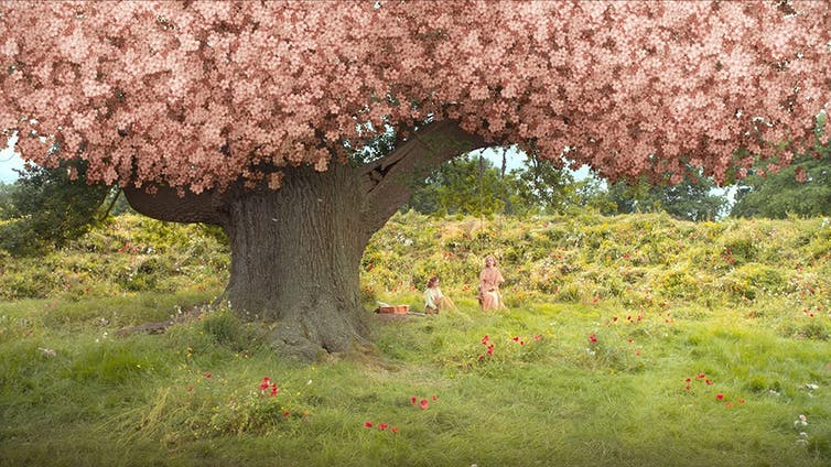 2020 movie still, a tree covered in pink flowers