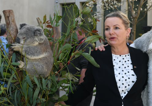 Sussan Ley stands beside a koala