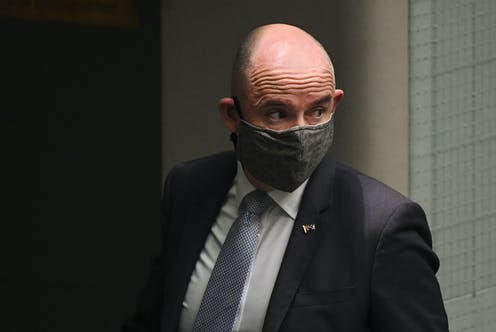 Federal Minister for Government Services Stuart Roberts wearing a mask.