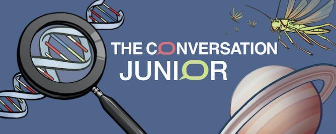 TC Junior