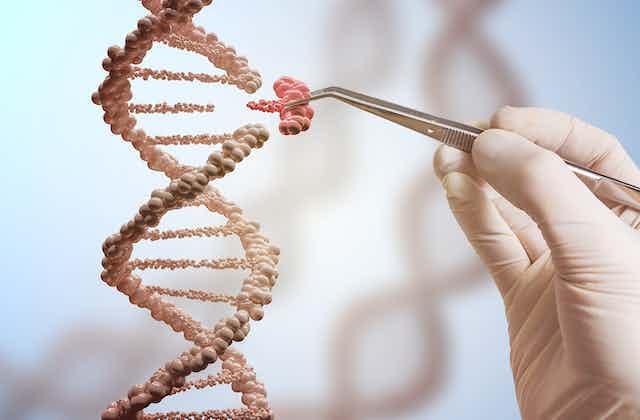 Gene editing illustration using DNA helix.