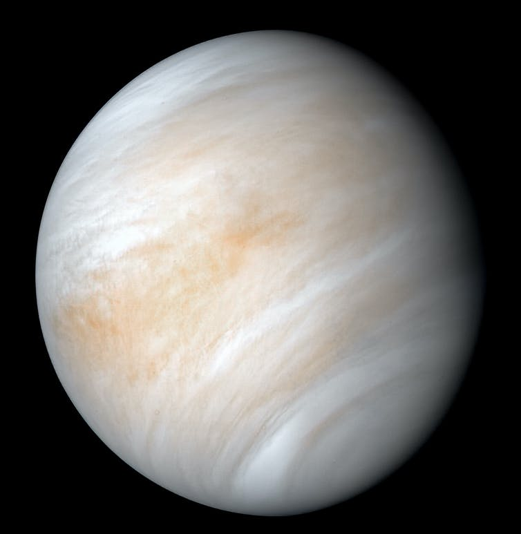 If there is life on Venus how could it have got there Origin of life experts explain-2