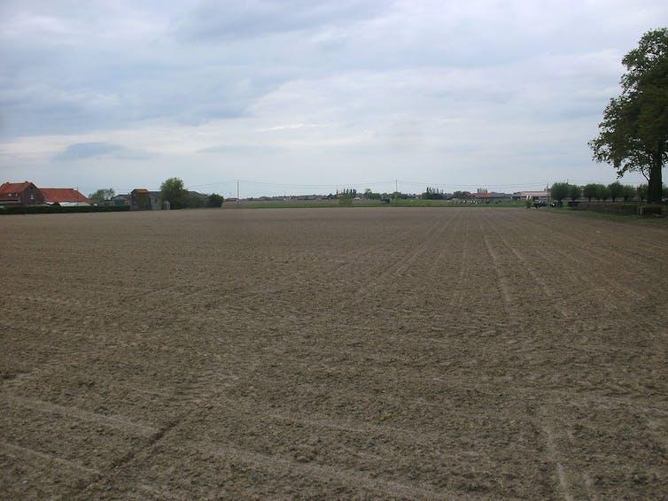 Campo labrado con granjas y árboles al fondo.