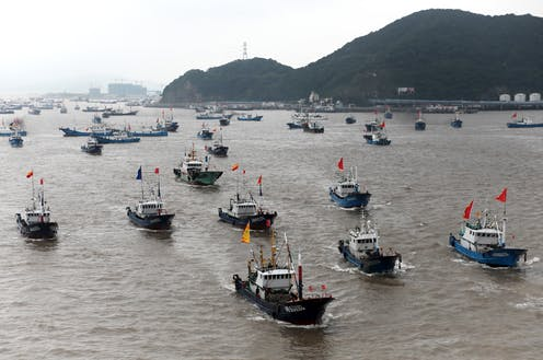 Dozens of commercial fishing boats flying the Chinese flag head out to sea