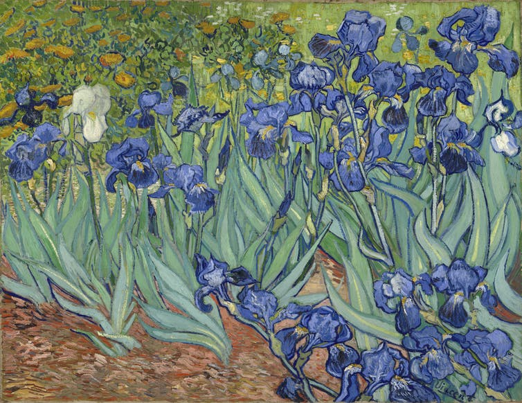 What does an 'unforgettable, multi-sensory experience' have to do with Vincent van Gogh?
