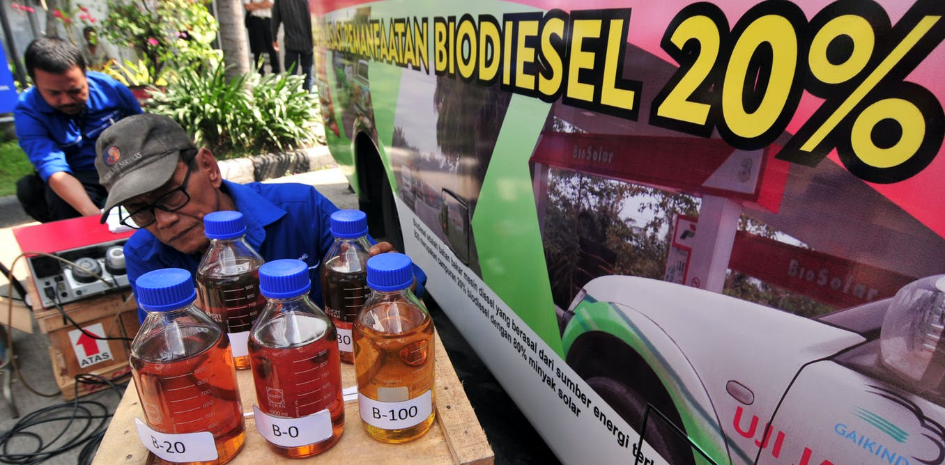 Indonesia readies its green diesel. These are the likely social and environmental impacts