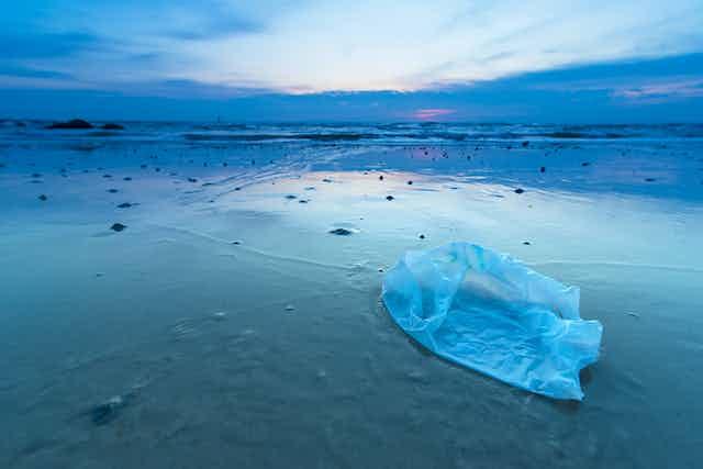 A plastic bag lies on a tropical beach.