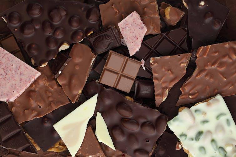 Microorganismos, química y chocolate: una relación deliciosa