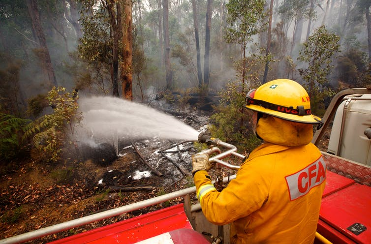 A volunteer firefighter hoses a forest.
