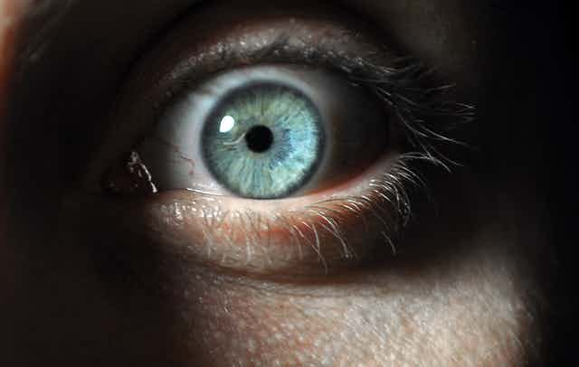 Picture of an eye showing fear.