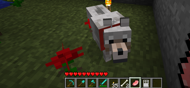 A dog in a screengrab from the game Minecraft