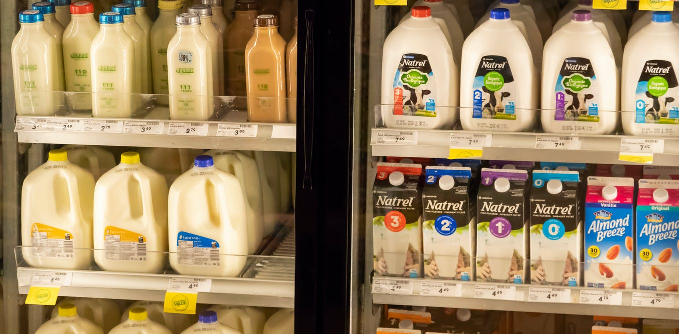 Soy, oat, almond, rice, coconut, dairy: which milk is best for our health?