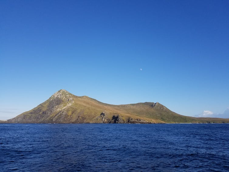 A view from a boat of Isla Hornos, a small mountainous island covered in greens and browns.