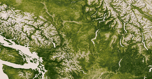A satellite photo of the Pacific Northwest showing near continuous green coverage.