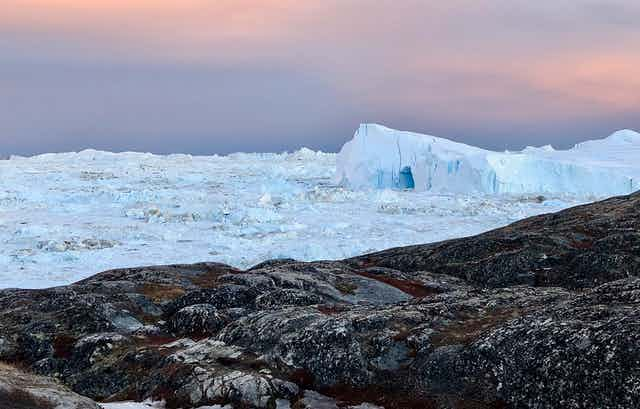 Ice and large icebergs completely covering a fjord with bare rock in the foreground.