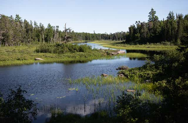 Boundary Waters lake with forested edges