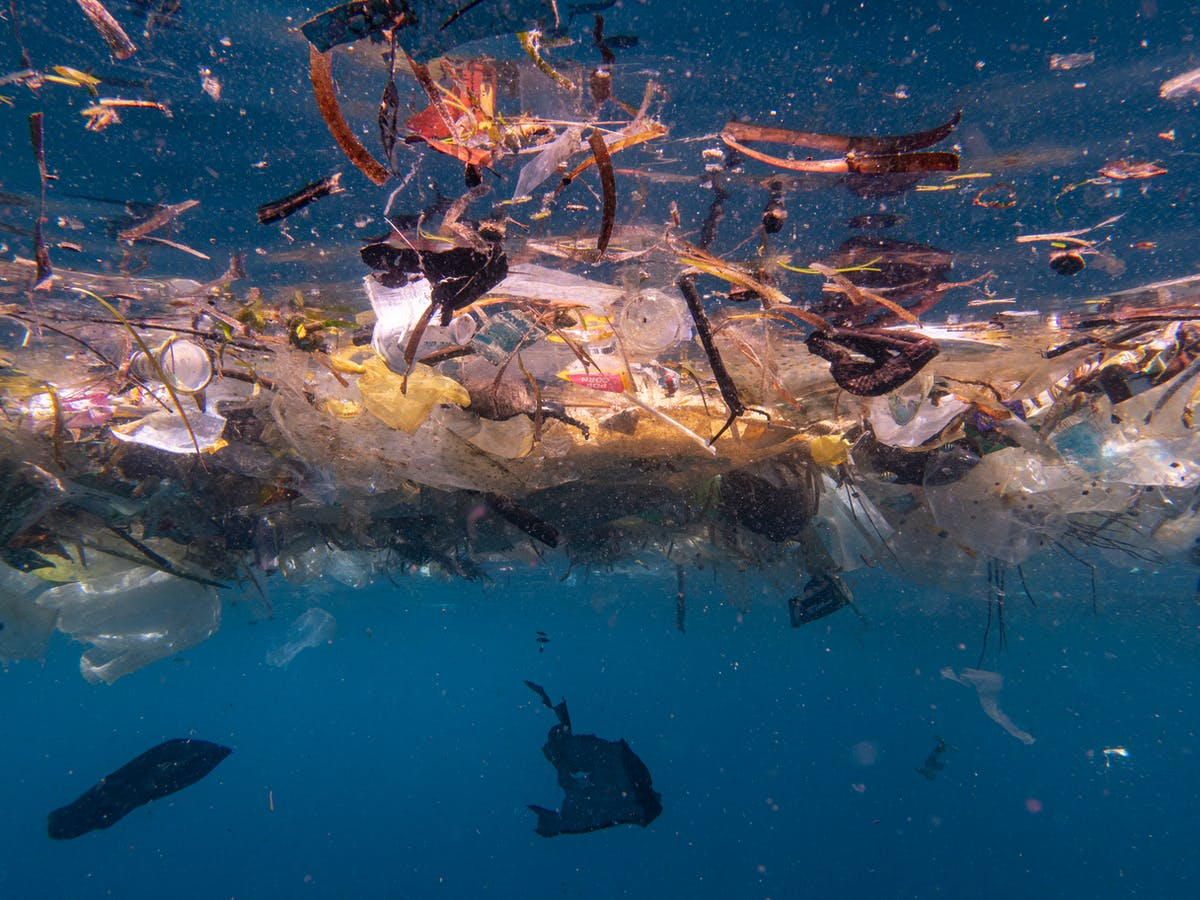 We estimate up to 14 million tonnes of microplastics lie on the seafloor.  It's worse than we thought
