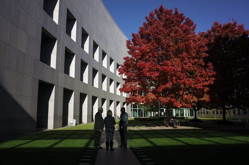The budget tree, in the parliament courtyard