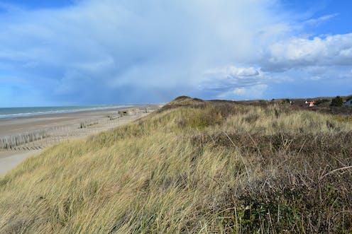 A Oye-Plage aux Ecardines, les bunkers, autrefois sur la digue, sont maintenant en haut de plage. Les maisons sont juste derrière le cordon dunaire.