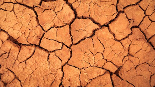 Cracked red earth