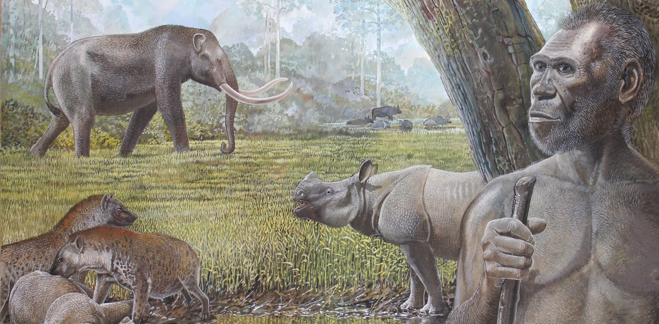 It was growing rainforests, not humans, that killed off Southeast Asias giant hyenas and other megafauna