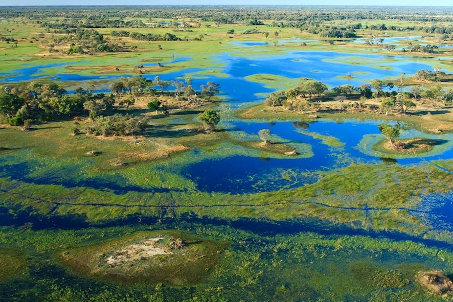 An aerial View of Okavango Delta in Botswana.