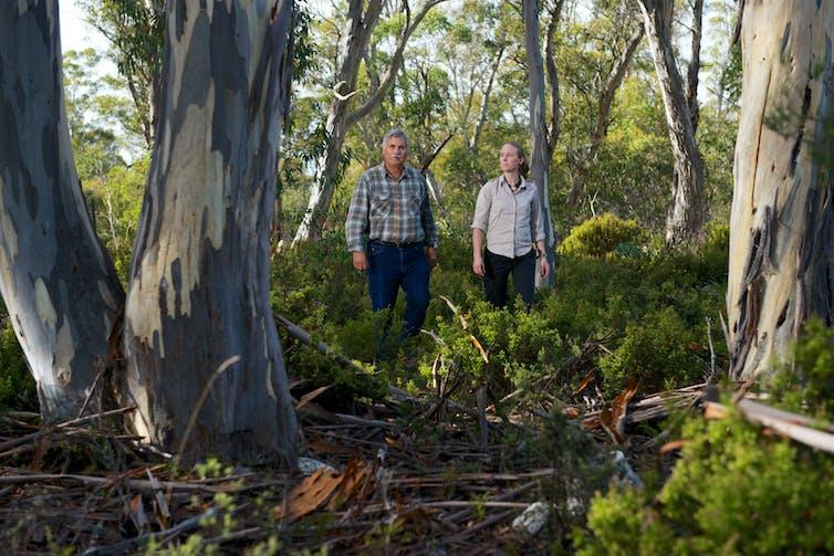 Two people walking through Tasmanian forest