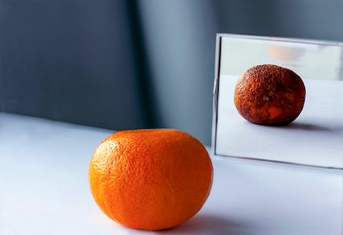 A fresh orange is placed in front of a mirror, while its reflection is aged