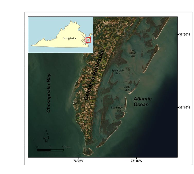 Satellite map showing project area in coastal Virginia.