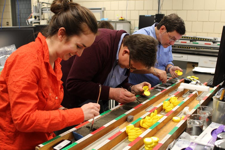 Scientists working with the cross-section of a sediment core
