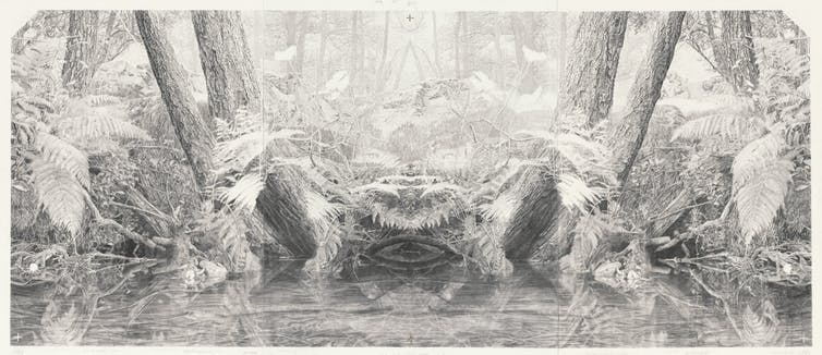 pencil drawing of fern undergrowth
