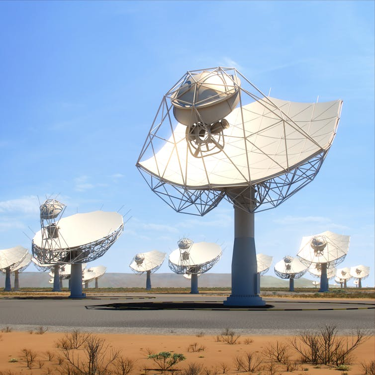 A field of next generation radio telescopes.